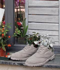 10092-chaussure-2