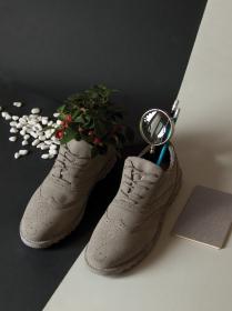 10092-chaussure-1